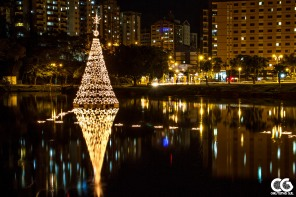 Floating Christmas tree... something new for me