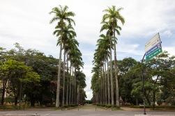 Praça da Liberdade (Liberty Square), Belo Horizonte